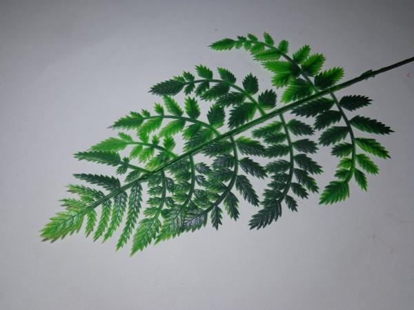 В0014 Лист Папоротник лесной Н=31см(20шт)